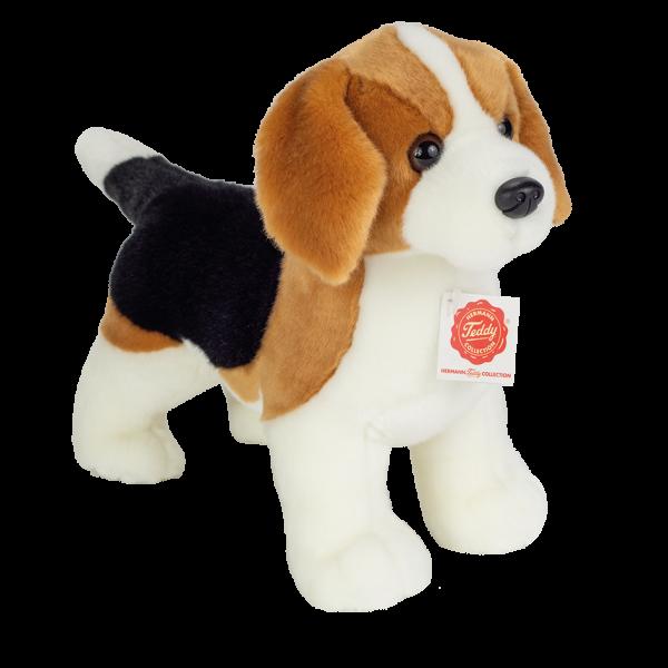 Teddy Hermann Beagle, 26 cm