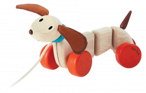 Nachzieh-Hund