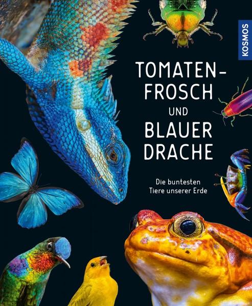 Tomatenfrosch und blauer Drache – Die buntesten Tiere unserer Erde